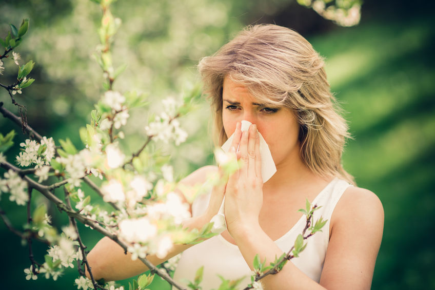 How to Overcome Springtime Allergies